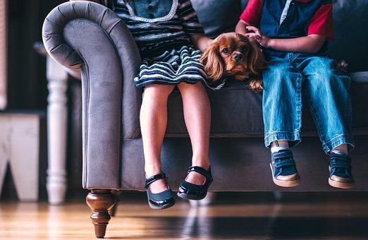 Можем ли лесно да се сдобием с висококачествен и модерен диван?